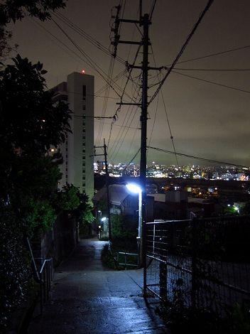 okinawa 182.jpg