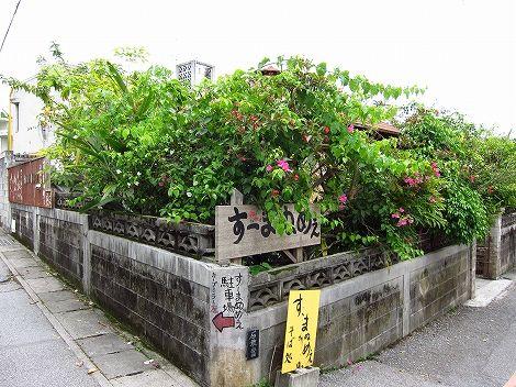 okinawa 443.jpg