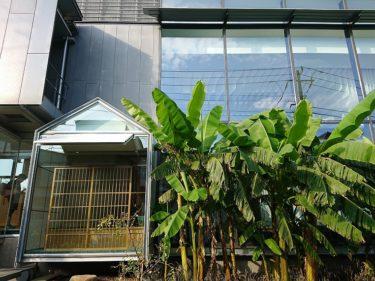新宿区立 漱石山房記念館のブックカフェ「カフェ・ソウセキ」の空也もなかセットをいただく