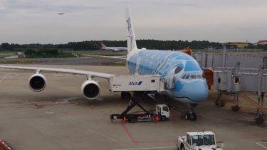 ANA A380フライングホヌでハワイに来ています