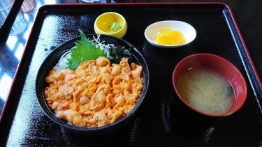 積丹 漁師の店「中村屋」の赤ウニ丼(日本人が旅する夏のニセコ2019 その10)