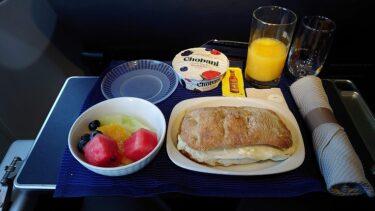 ユナイテッド航空 米国内線ファーストクラス ニューアークEWR>シカゴORD(ニューヨーク弾丸旅行2020年2月 その17)