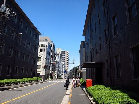 aoyama_kagura 150.jpg