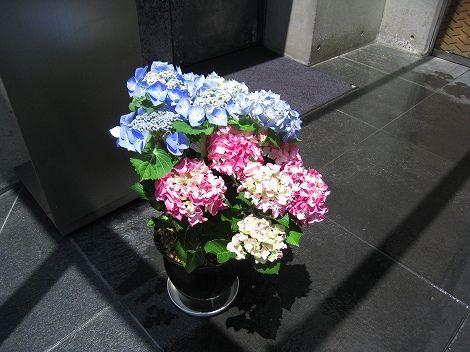 fukuoka 048.jpg